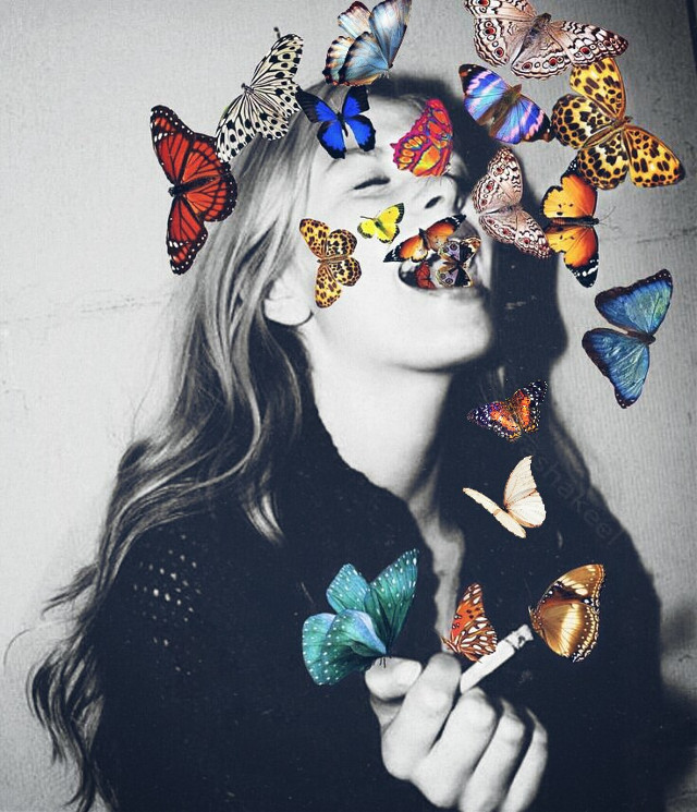 #freetoedit #butterflies #blackandwhite