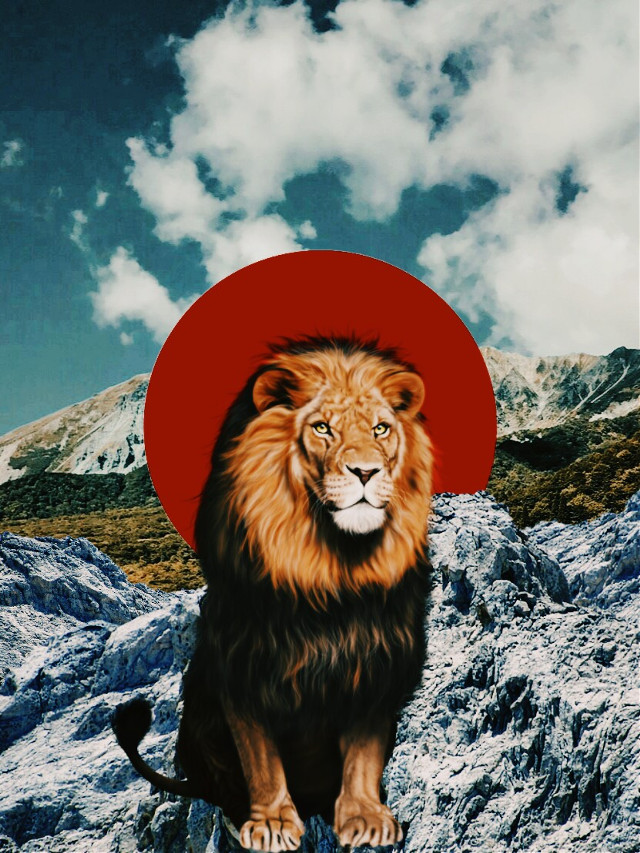The Lion #freetoedit #collageoftheday #collage #nature #lion #mountain #judahlion #juda