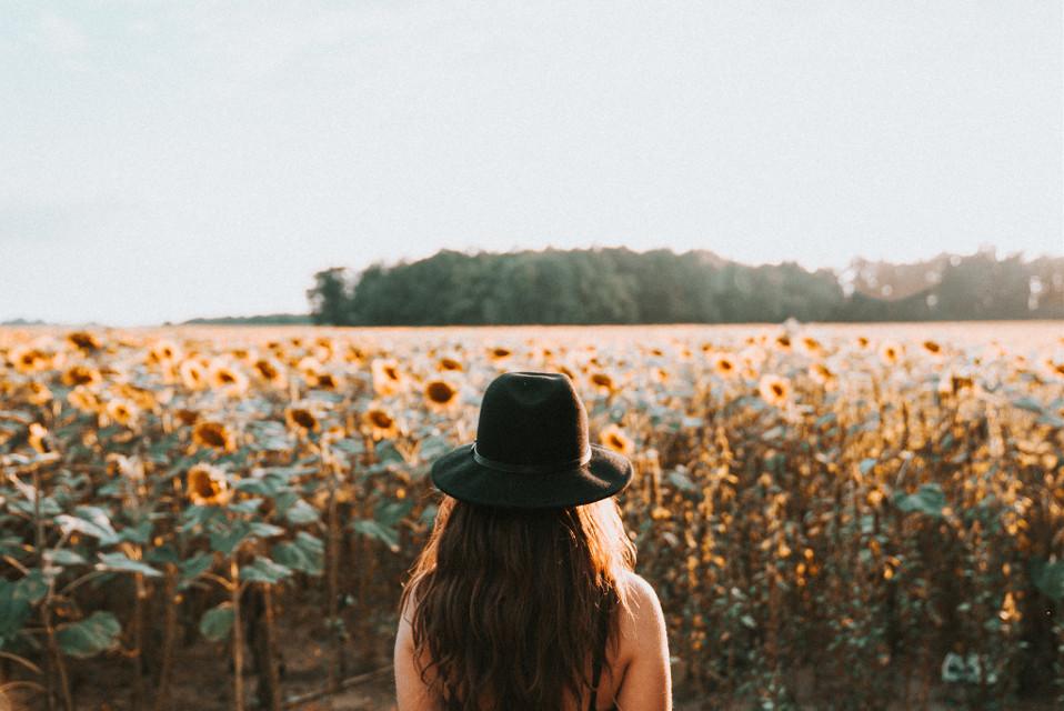 Give this image a fabulous remix! Unsplash (Public Domain) #freetoedit #girl #girls #flowers #sunflowers #sunset #outdoor #nature