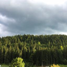 photography nature mountains forest carpathians freetoedit