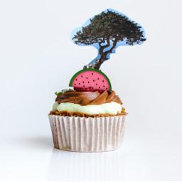 irccupcakeday cupcakeday freetoedit cedars