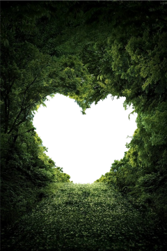 heart trees path bushes freetoedit