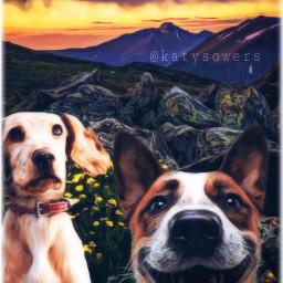 ircdogday dogday freetoedit mansbestfriend dog