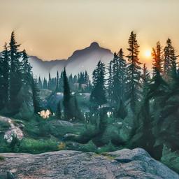 forest beautiful autumn ihatesummer back freetoedit