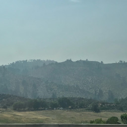 nevada forestfire fire savenature nature freetoedit