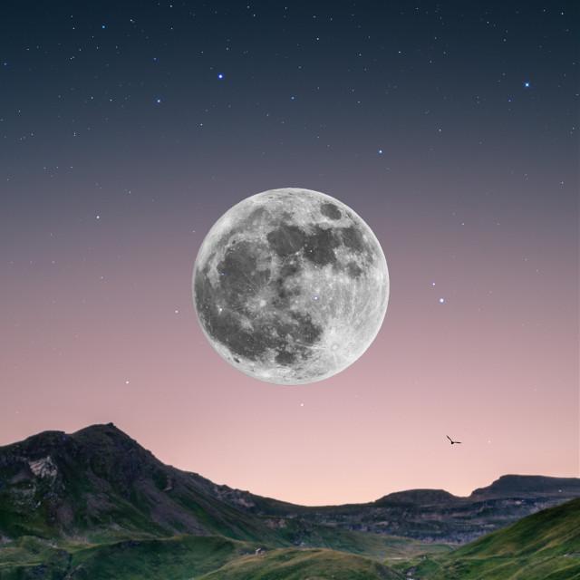 Make a wish💫  #edit #night #sky #moon #freetoedit