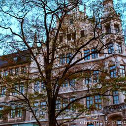 tree house munich photography canon