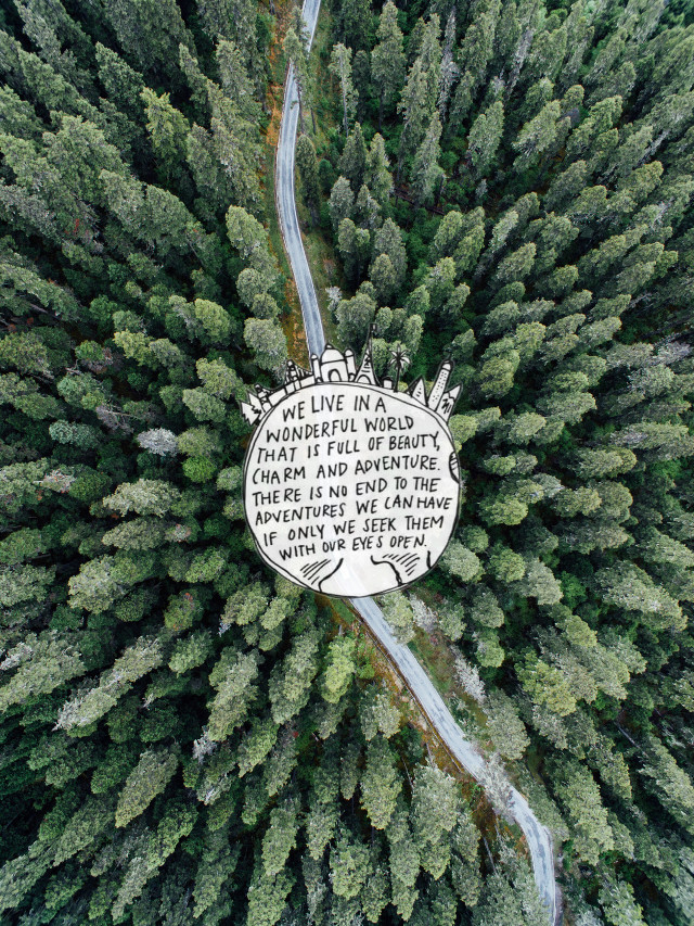 #freetoedit #travel #travelquote #travelquotes #quote #quotes #trees #tree #forest #jungle #road #street #path #birdseyeview #drone #simpleedit #green #white #sticker #myedit @picsart @freetoedit