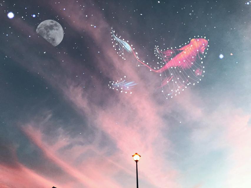 #freetoedit #moon #stars #starconstellations #fish #sky #sunset #clouds #pinkclouds #night #dramaeffect #madewithpicsart #art #picsart