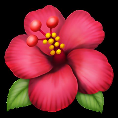 Emoji Fleur Fleur Flora Rose Pink Apple Iphone