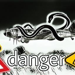 freetoedit danger snake black plane ircsilverairplane
