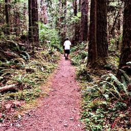 hikingbuddy hiking hikingandexploring explore adventure
