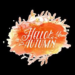 autumn fall seasons season leaves