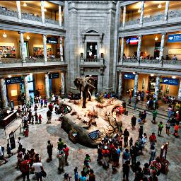 museums freetoedit remixit pcmuseumsandgalleries museumsandgalleries