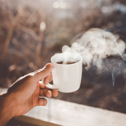 autumn fall coffe tea cozy freetoedit