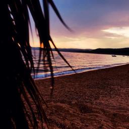 interesting nature beach travel sea