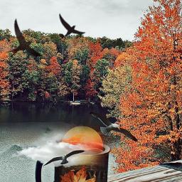 freetoedit autumnsunset