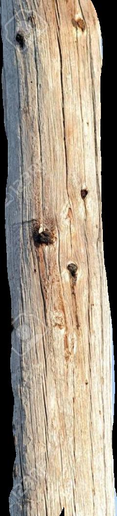 pole freetoedit