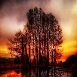 autumnsunset freetoedit hdr2 trees beautiful