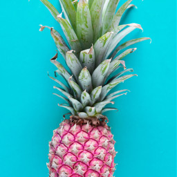 pineapple fruit fruits food colorful freetoedit