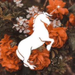 freetoedit unicorn magic roses beautiful