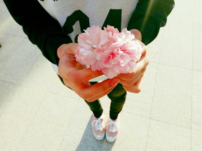 #freetoedit #pink#flower