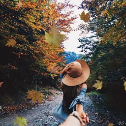 srcfallingleaves fallingleaves autumn challenge photography day freetoedit
