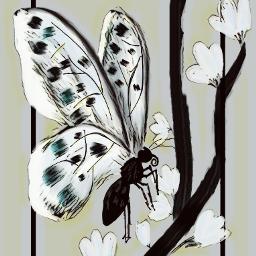 butterfly-kisses freetoedit butterfly