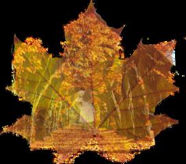 autumnsticker autumnstickers autumngirlstiker autumngirlstikers freetoedit