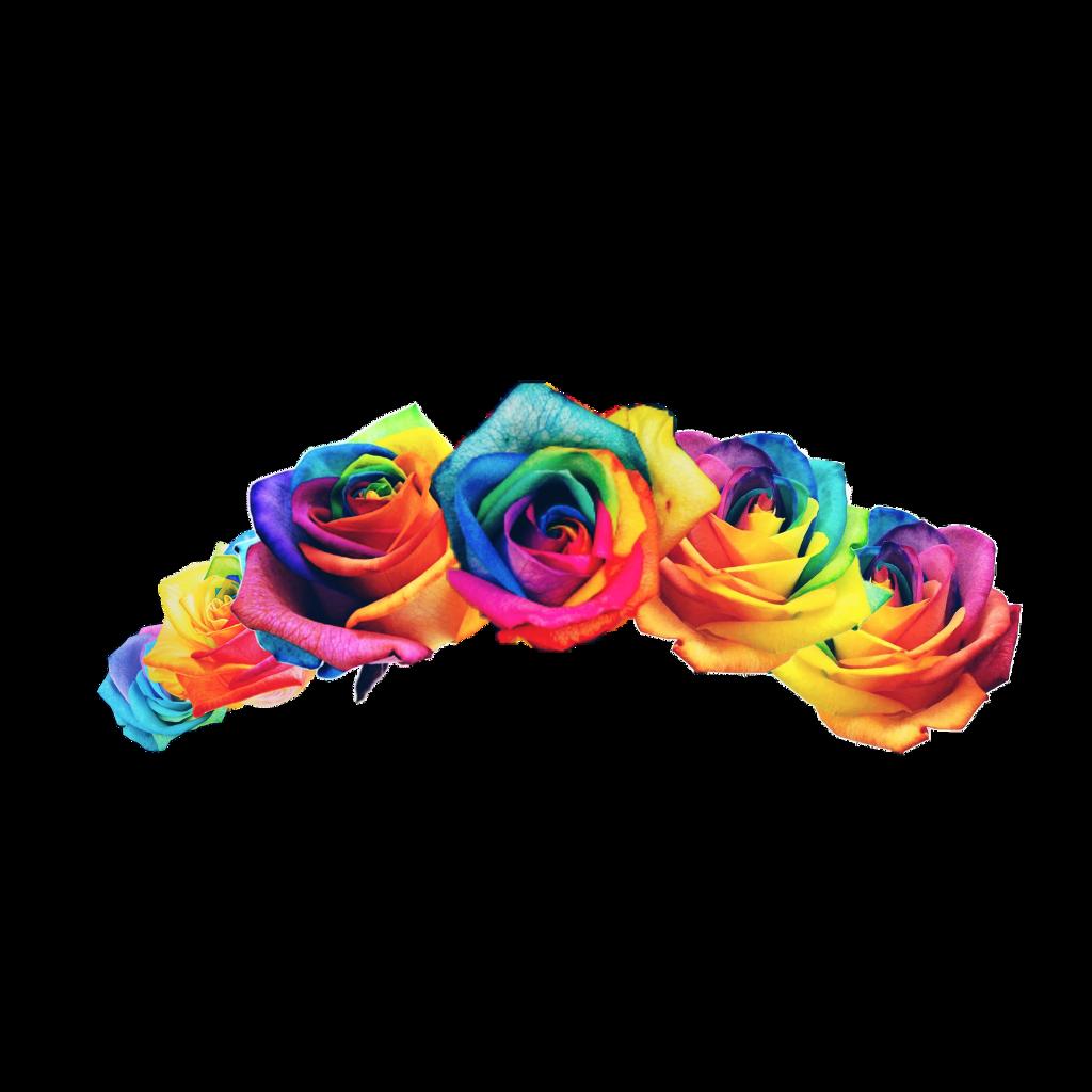 #rainbow #rainbowflower #flowercrown #pride
