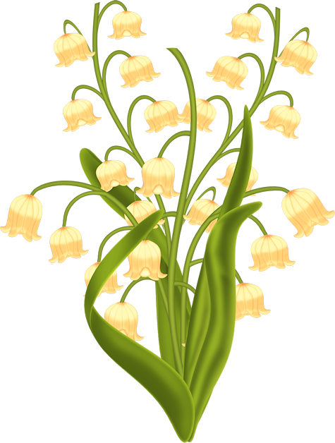 #ftestickers#flowers