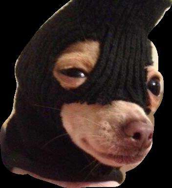 #robber #freetoedit
