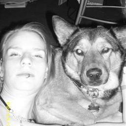 doggylove petselfie pcanimalselfie animalselfie