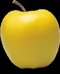apple yellowapple freetoedit
