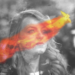 bing phoenix courage determination fire freetoedit