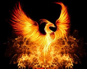 phoenix fantasyart fantasy makebelieve imagination freetoedit
