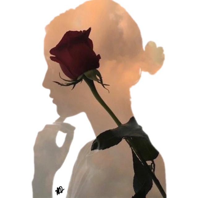 #freetoedit #backgrounds #flowers