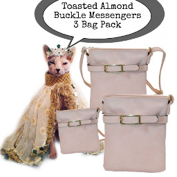 freetoedit fashionpets cat bags stockimage