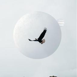 freetoedit eagle jupitermoon jupiter mountain