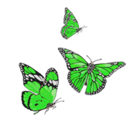 butterfly green insect butter sticker