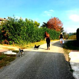 pcstreets streets countryside stillness nature freetoedit