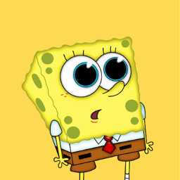 freetoedit spongebob bobesponja bob animandra