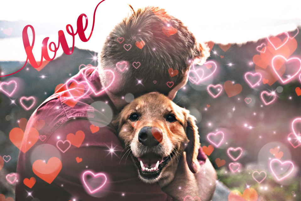 #freetoedit  #dog #doglover #love