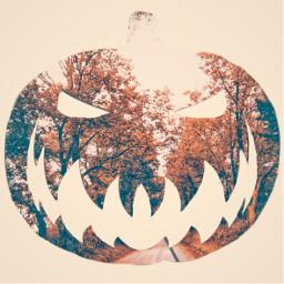freetoedit pumpkin jackolantern halloween october