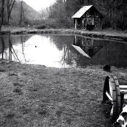 freetoedit pond barn water nature