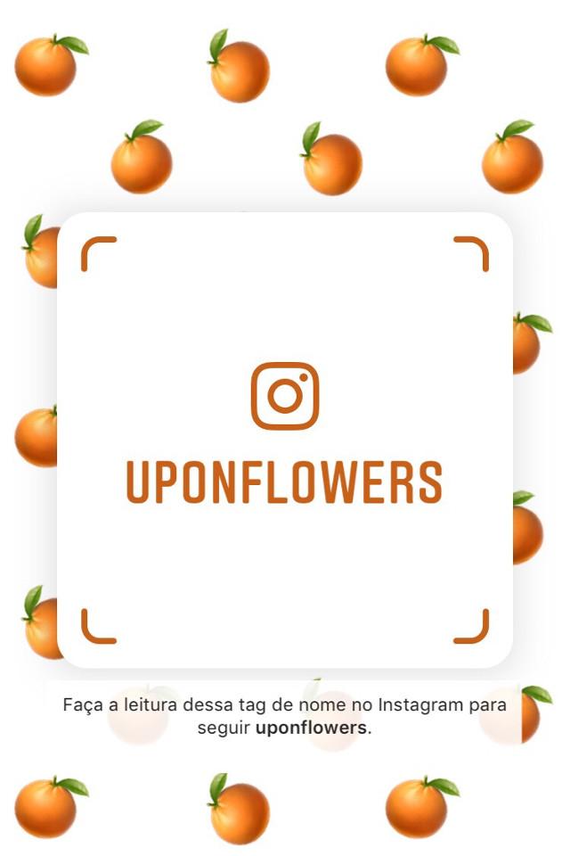 https://instagram.com/uponflowers?r=nametag