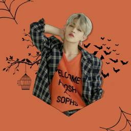 armyxblinkhalloween scoups seventeenseungcheol seventeenscoups