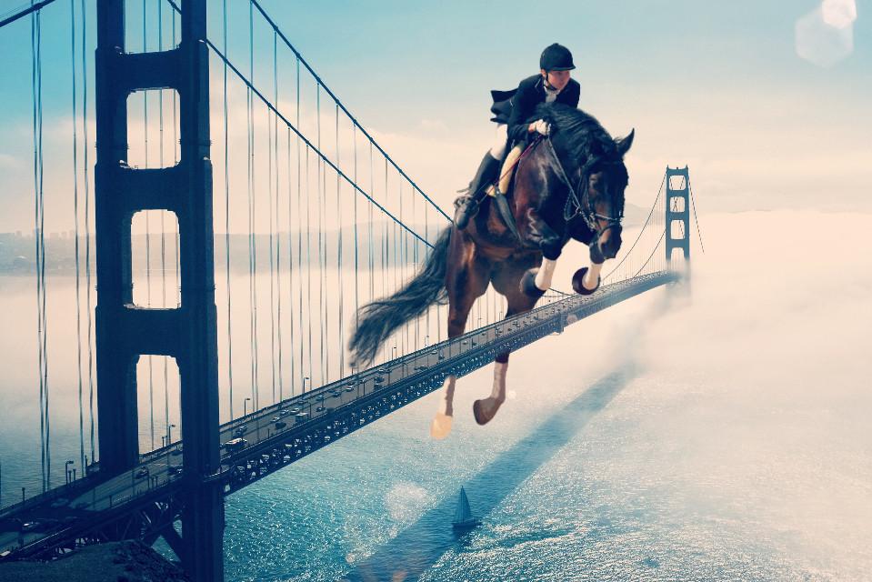 #freetoedit #horse #horsejumping #jumping #bridge #bridgeovercalmwater
