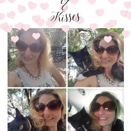 lovehim cats catlove? freejewelry livinglife