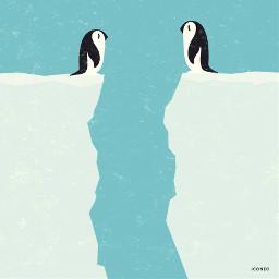 penguin arctic globalwarming animals animallovers